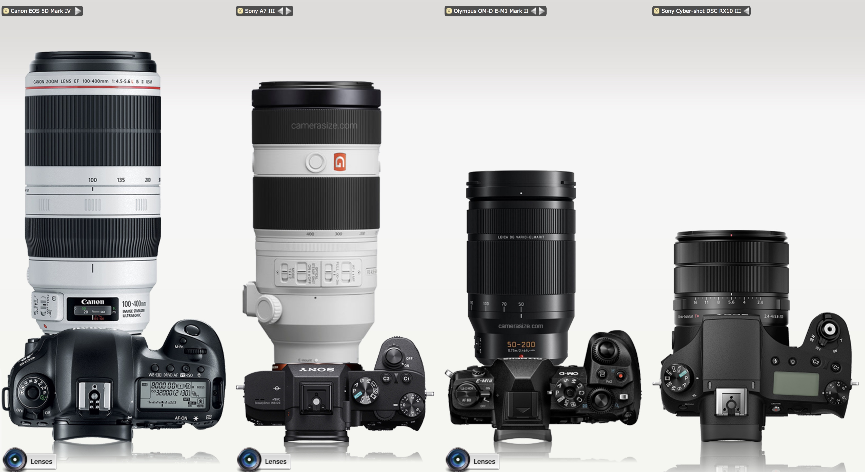Galapagos Photography Camera Lens Parts Diagram Nikon Related Keywords Heres A Comparison Of Sizes All With 100 400mm Equivalent Focal Lengths Except The Rx10 Is 24 600mm